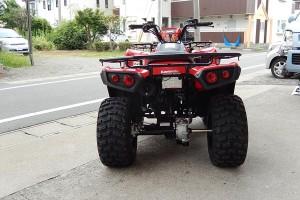Kawasaki Bugy (6)
