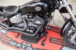 Harley (6)