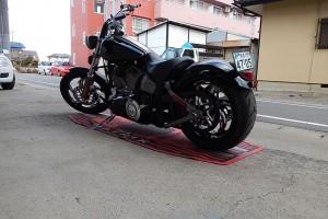 Harley (9)