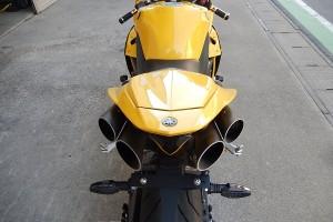 R1 amarela (20)